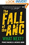 The Fall of the ANC: What Next?
