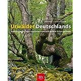 Urwälder Deutschlands: Nationalparks, Naturwaldreservate und andere Schutzgebiete