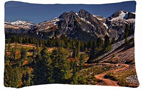 Microfiber Peach Standard Soft And Silky Decorative Pillow Case (20 * 26 Inch) - Landscapes Mountains Road Landscape front-880007