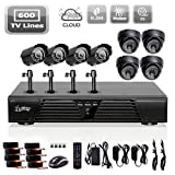 Liview® Full D1 8ch DVR and Outdoor/indoor 600 Tvline Camera System