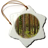 3dRose orn_82603_1 Pine Tree Forest, Smaland, Sweden EU28 PKA0060 Per Karlsson Snowflake Ornament, Porcelain, 3-Inch