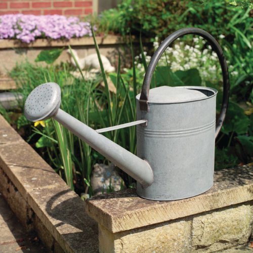 Aged Zinc Watering Can 9L (2 Gal)