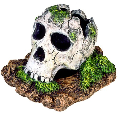 Exotic Environments Broken Skull Aquarium Ornament, Small, 5-Inch by 3-1/2-Inch by 4-Inch