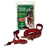 Gentle Leader Deluxe Head Collar and Leash, Medium, Bones On Square/Black