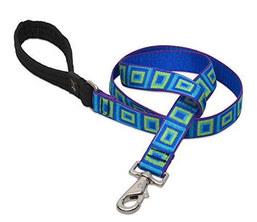 Lupine 1 Inch Sea Glass Dog Lead For Medium And Large Dogs, 4-Feet front-472898
