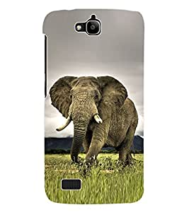 Fuson 3D Printed Elephant Wallpaper Designer Back Case Cover for Huawei Honor Holly - D833
