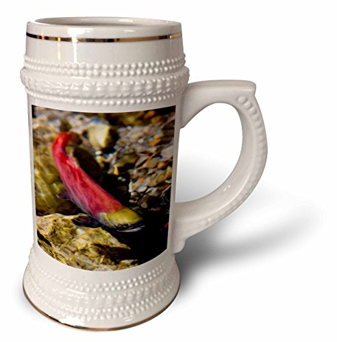 danita-delimont-canada-kokanee-salmon-heading-upstream-british-columbia-canada-22oz-stein-mug-stn-22