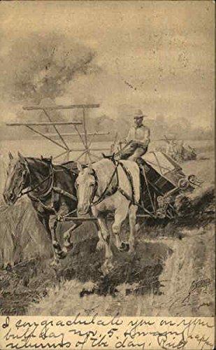 Farmer-Harvests-Hay-Field-With-Help-of-Horses-Farming-Original-Vintage-Postcard