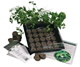 51Yto F1rwL. SL160  Indoor Culinary Herb Garden Starter Kit  Start Growing Fresh Cooking Herbs & Spices  Great Gift Idea!  Seeds: Parsley, Thyme, Cilantro, Basil, Dill, Oregano, Sweet Marjoram, Chives, Savory, Garlic Chives, Mustard, Sage