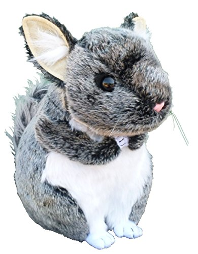 Chinchilla Stuffed Animal