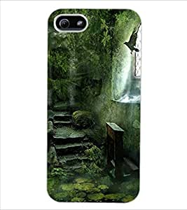 ColourCraft Printed Design Back Case Cover for APPLE IPHONE 5