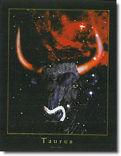 Taurus-Zodiac-Sign-Astrology-Horoscope-Wall-Art-Print-Poster-16x20