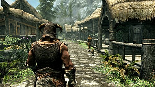 The Elder Scrolls V: Skyrim SPECIAL EDITION 【CEROレーティング「Z」】 - PS4