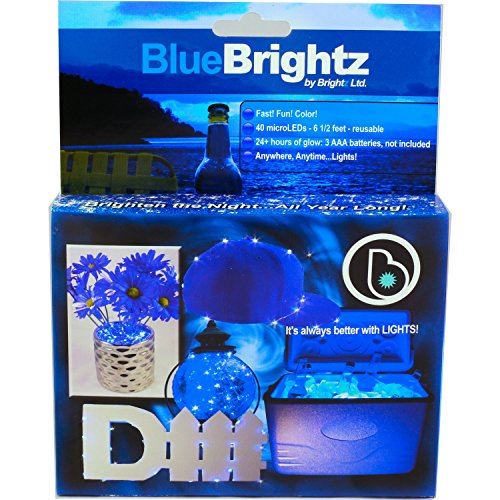 Brightz, Ltd. Blue Everyday Color Brightz Do It Yourself LED Light Accessory (Teen Bedroom Accesories compare prices)
