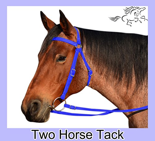 Australian Bridle & Reins Made From Beta Biothane - Large Pony Size, Blue Color