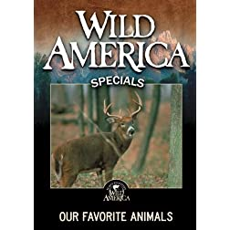 Our Favorite Animals