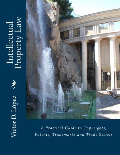 http://www.amazon.com/Intellectual-Property-Law-Copyrights-Trademarks-ebook/dp/B005AWNCFS/ref=la_B001KMII74_1_2?s=books&ie=UTF8&qid=1387732230&sr=1-2