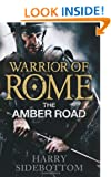 Warrior of Rome: The Amber Road (Warrior of Rome 6)