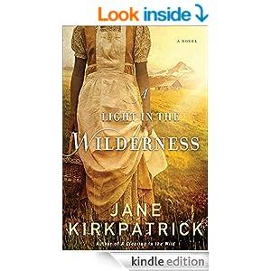 Light in the Wilderness, A: A Novel