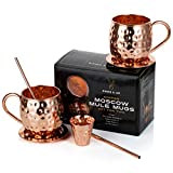 Handmade Hammered Moscow Mule Copper Mugs Set of Two by Riches & Lee - This 100% Copper Gift Set Includes: 2 x Mugs, 2 x Coasters, 2 x Straws, 1 x Shot Measuring Cup plus Bonus Cocktail Recipe eBook