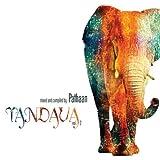 echange, troc Pathaan - Tandava 2