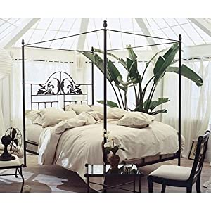 iron harvest moon canopy bed by charles p rogers california king canopy bed open