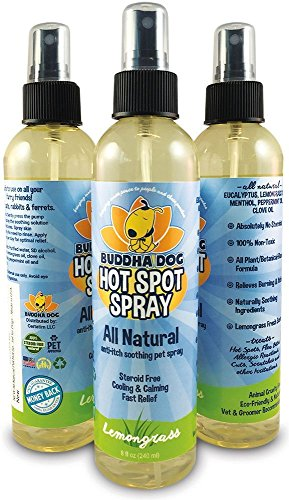 steroid spray for dogs side effects