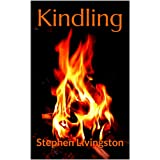 Kindling (a collection of short stories)di Stephen Livingston