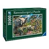 Ravensburger - 17823 - Puzzle - Animaux - 18000 Pièces
