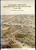 Nathaniel Whittock's bird's-eye view of the city of York in the 1850's: A commentary Hugh Murray