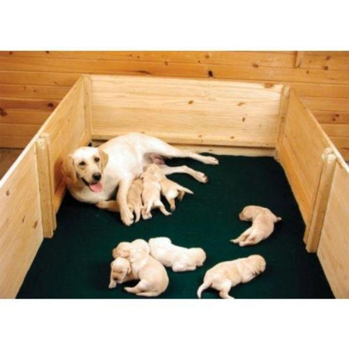 Whelping Box Liners - 48