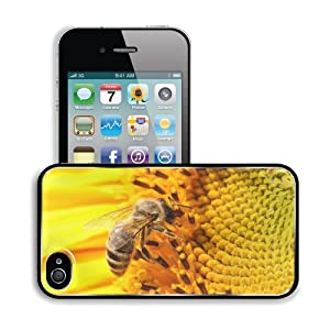 Amazon.com: Animal Mejores Mundo Paisajes Walpaper Naturaleza Apple