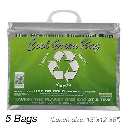 Insulated Bag | Thermal Bag | Hot Cold Bag (5 Lunch Bags) (Commercial Thermal Bags compare prices)