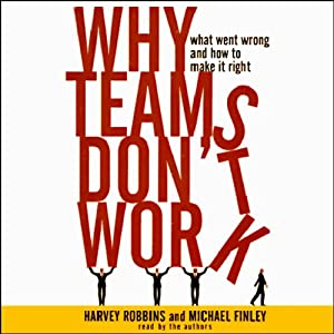 Why Teams Don't Work | [Harvey Robbins, Michael Finley]