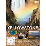 "Yellowstone - Legend�re Wildnisvon ""BBC"""