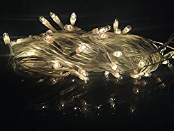 Decorative Warm White LED Light 25 Feet Long