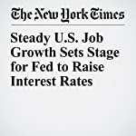 Steady U.S. Job Growth Sets Stage for Fed to Raise Interest Rates | Patricia Cohen
