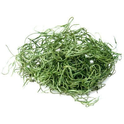 Super Moss 26922 Spanish Moss Preserved, Grass, 32-Ounce (Discontinued by Manufacturer) photo