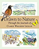 img - for Drawn to Nature: Through the Journals of Clare Walker Leslie by Leslie, Clare Walker (2005) Paperback book / textbook / text book