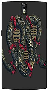 Timpax protective Armor Hard Bumper Back Case Cover. Multicolor printed on 3 Dimensional case with latest & finest graphic design art. Compatible with One Plus One ( 1+1 ) Design No : TDZ-27009