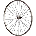 Taylor Wheels 28-inch rear wheel allo...