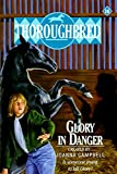 Glory in Danger (Thoroughbred, No 16) (0061063967) by Campbell, Joanna