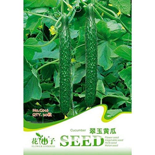 cucumis-sativus-seeds-garden-vegetable-planst-20pcs