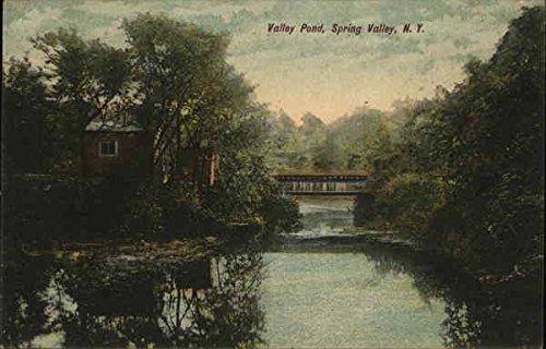 Valley Pond Spring Valley, New York