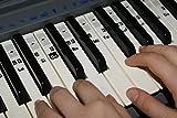 Autocollants de Note de Musique de Piano de clavier Solfège Transparent