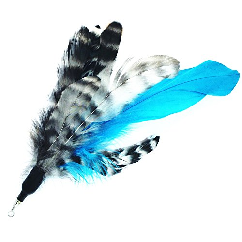 Pet fit for life retractable wand with 2 feathers for your for Retractable cat toy