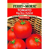 Ferry-Morse 1395 Tomato Seeds, Big Boy Hybrid (590 Milligram Packet)