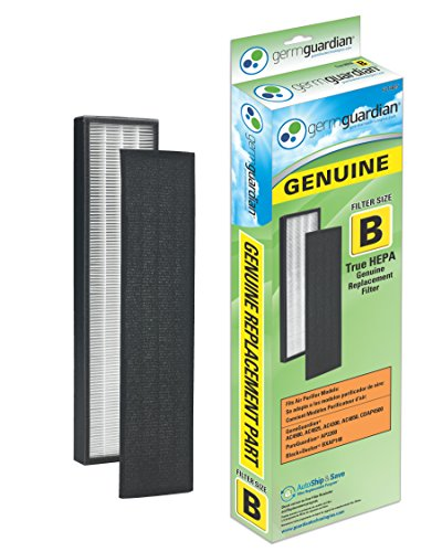 GermGuardian FLT4825 GENUINE True HEPA Replacement Filter B for AC4300/AC4800/4900 Series Air Purifiers