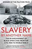 Image of Slavery by Another Name: The re-enslavement of black americans from the civil war to World War Two
