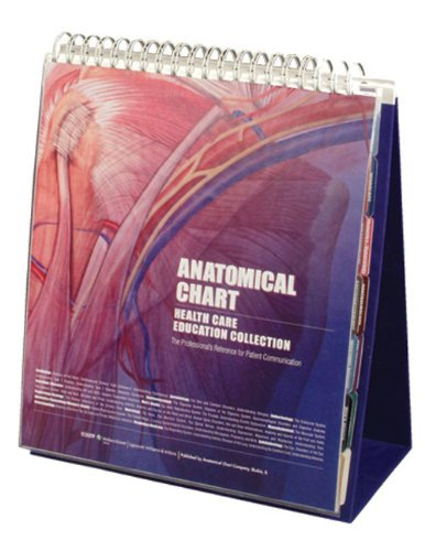 Anatomical Chart Healthcare Education Collection: